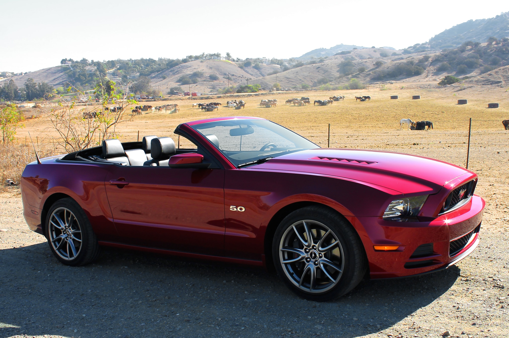 ford mustang convertible 2014 primera prueba autos terra motortrend. Black Bedroom Furniture Sets. Home Design Ideas