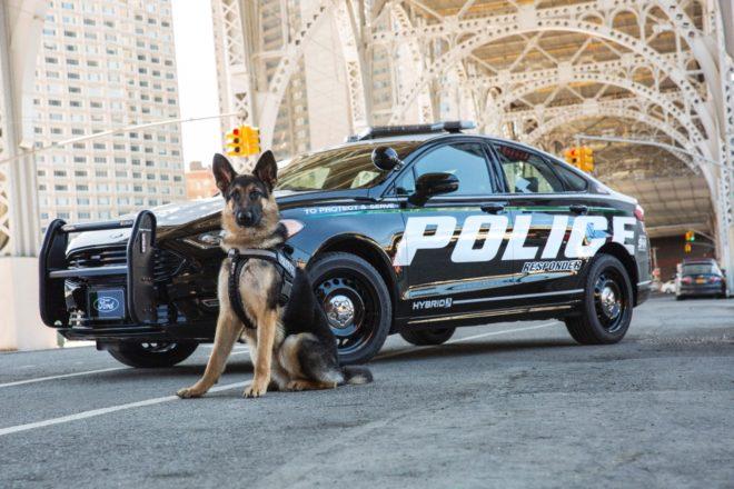 Police Responder Hybrid Sedan 6