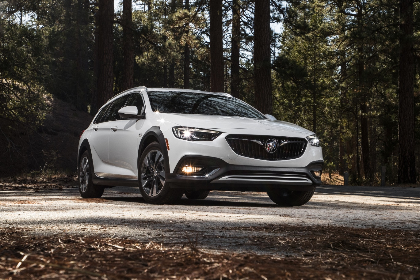 2018 Buick Regal TourX17