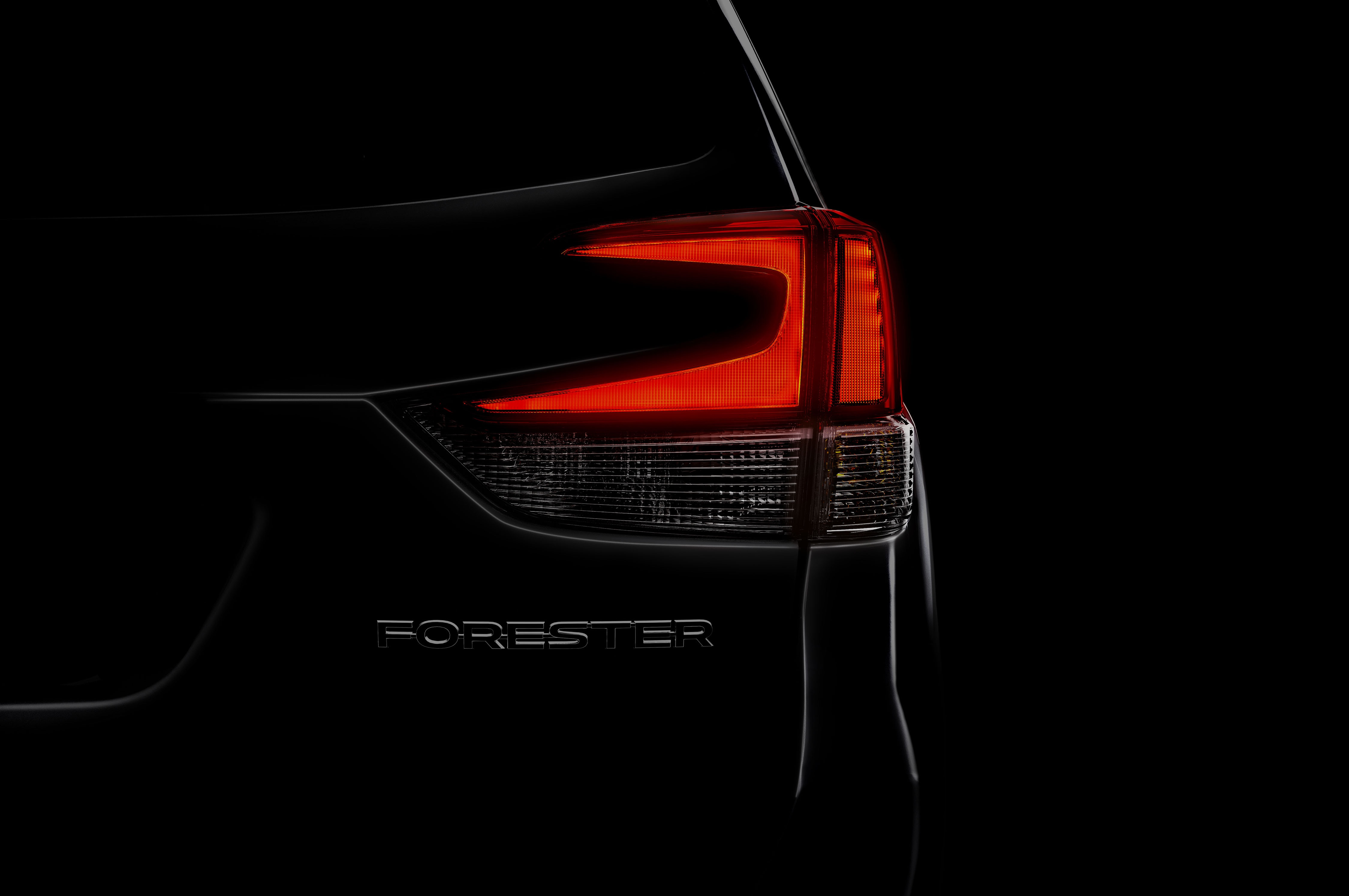 2019 Subaru Forester Taillight