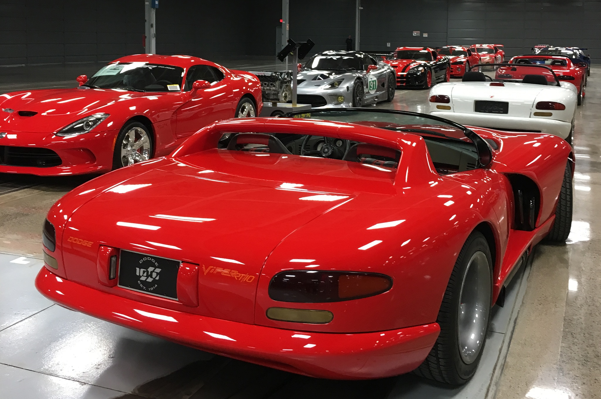 Dodge Vipers Lined Up