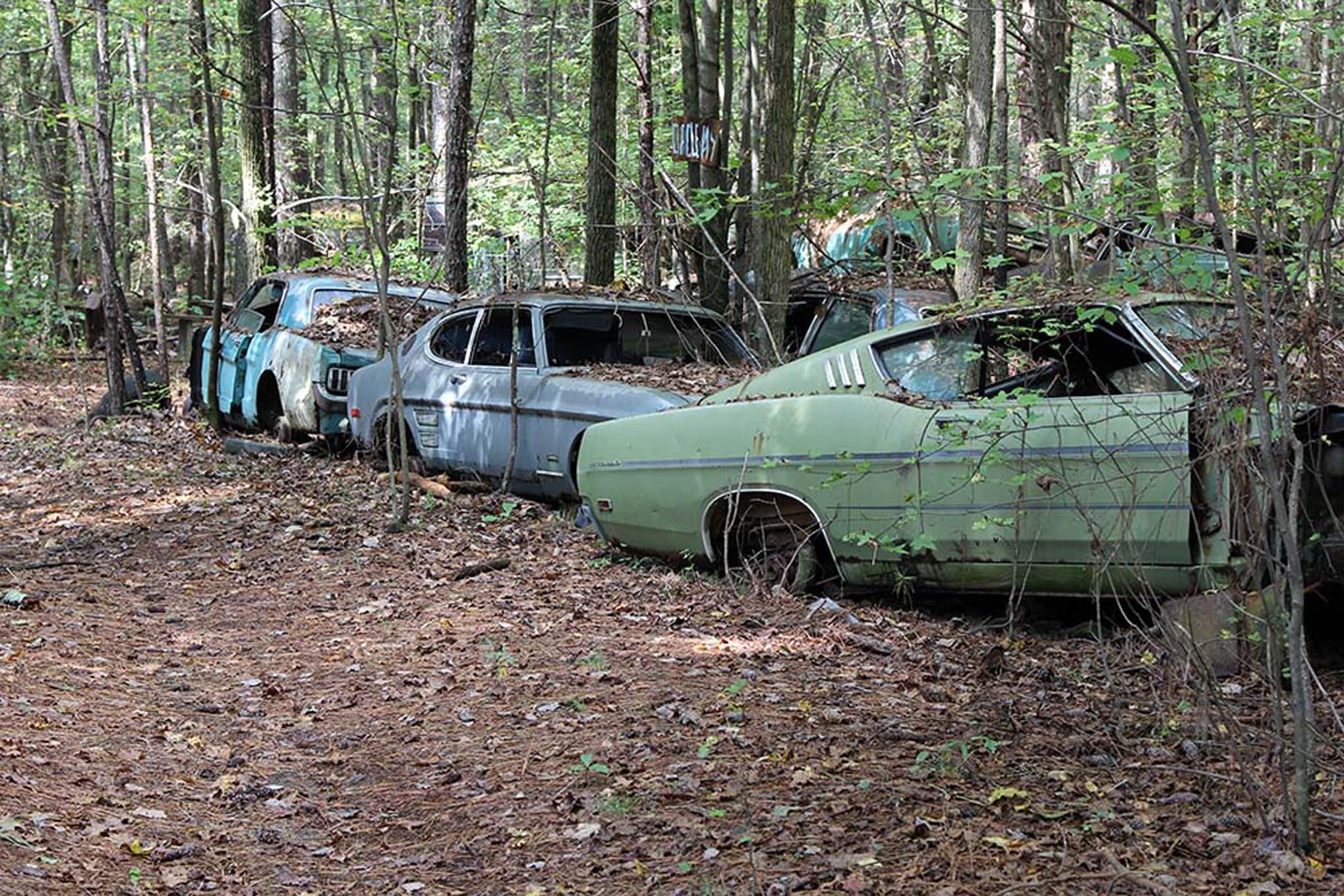 Frame Park Car Show