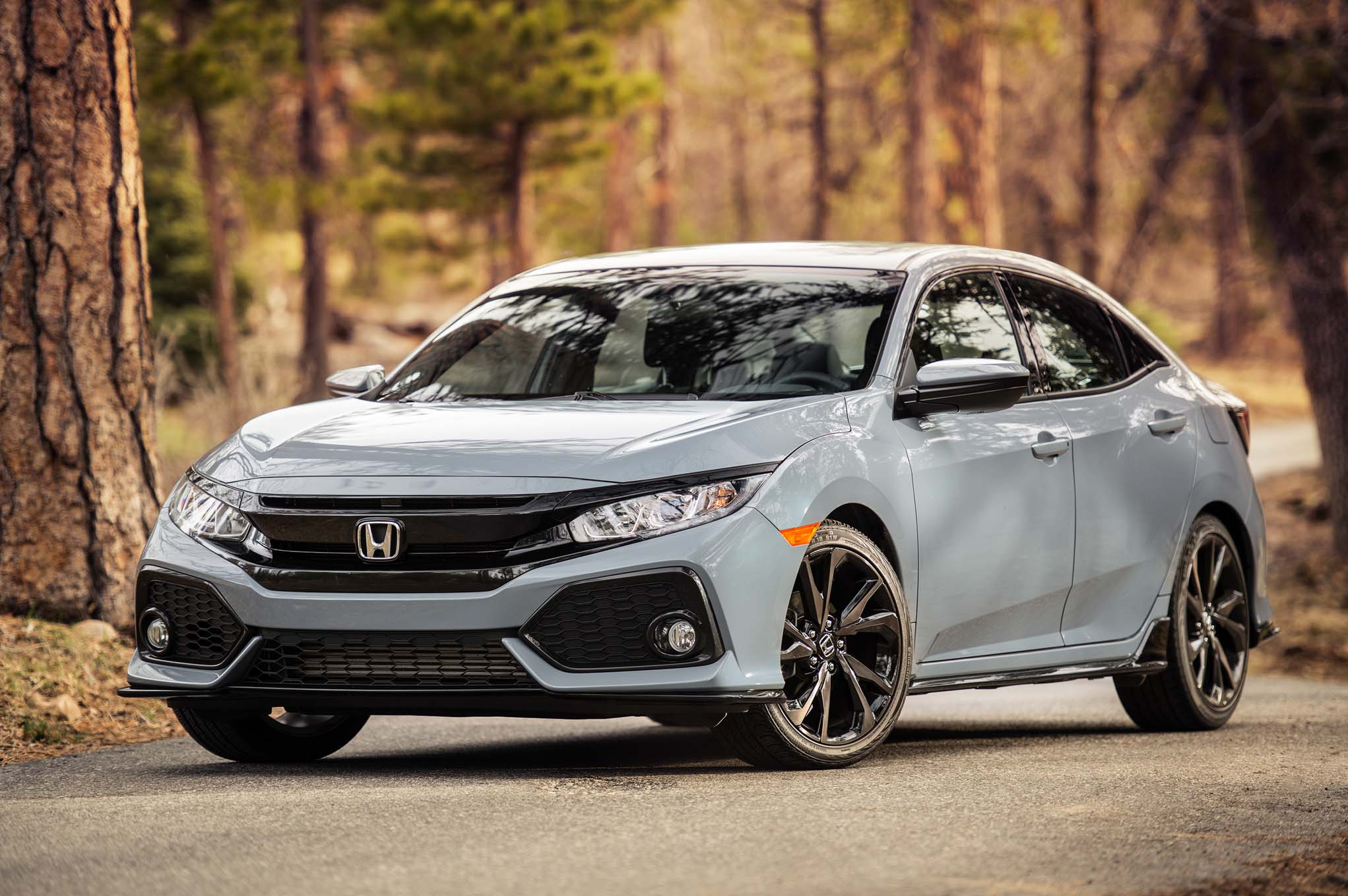 The tenthgeneration Honda Civic challenges the best family hatchbacks head on although options are limited